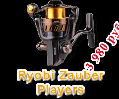 Ryobi zauber PLAYERS