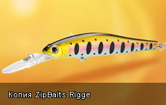 К Копия ZipBaits Rigge